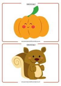flashcards Autumn-04